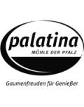 Die Mühle der Pfalz